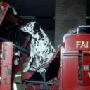 Fairfax County Fire Station 409 Historical Photos (9)
